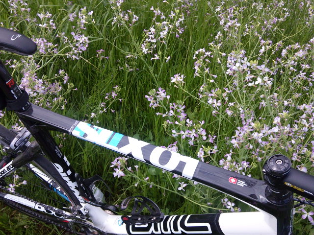 BMC SLX 01