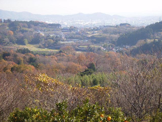 柳川盆地を望む41
