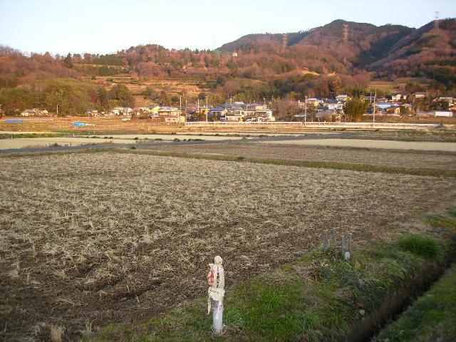 冬の田んぼ18