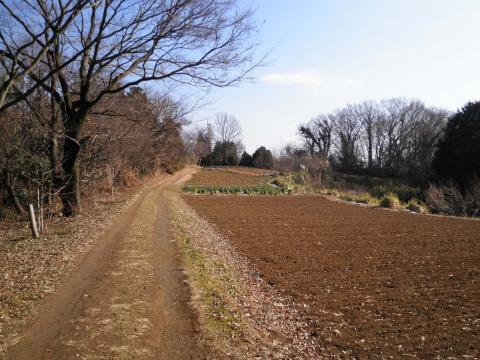 枯草の農道97