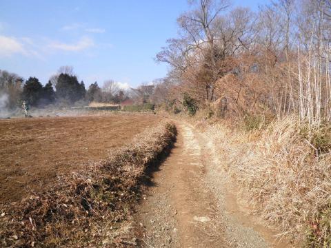枯草の農道93