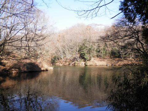 冬木の湖畔72