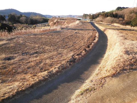 冬の坂本古道44