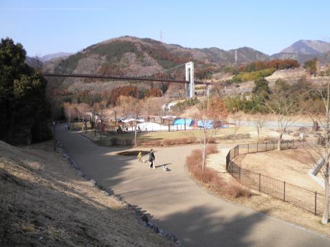 犬の散歩040