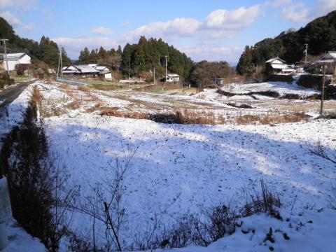 雪の田んぼ222