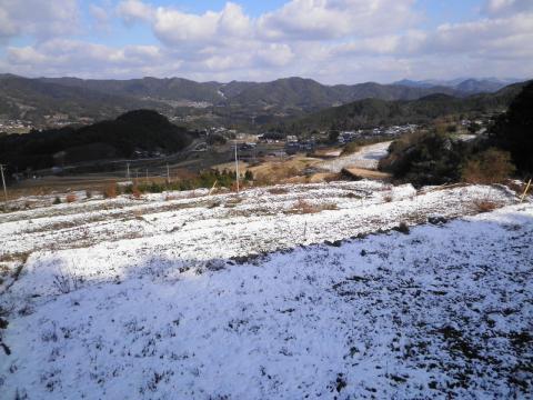 雪の田んぼ217