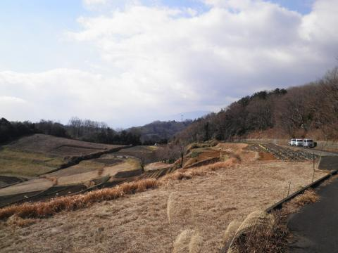 丘の畑32