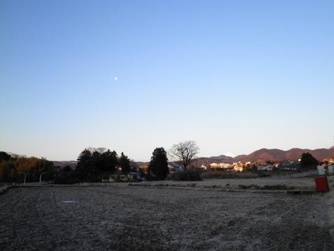 冬の田んぼ05