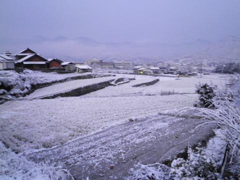 田んぼの雪78