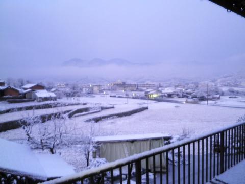 朝の雪70