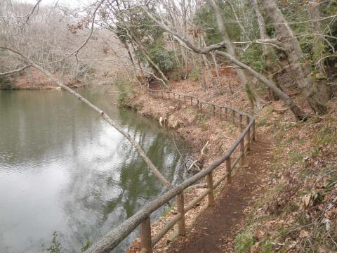 初春の遊歩道76
