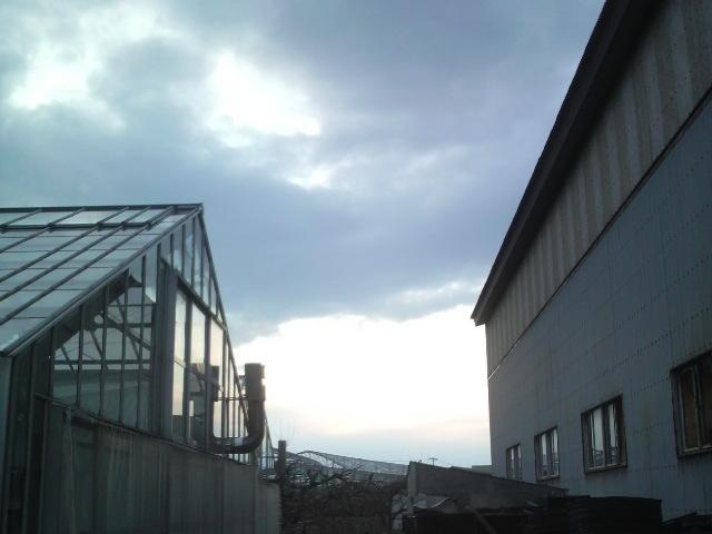 アグリ夕焼け20110324