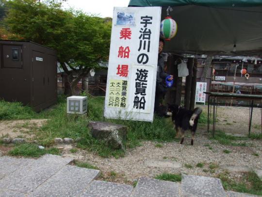 京都 154