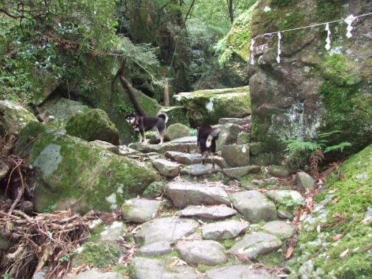 犬鳴山 07