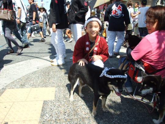 岸和田だんじり祭り 10