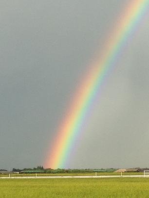 すっごく綺麗なおっきな虹♡