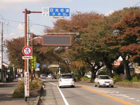 上戸祭の桜並木