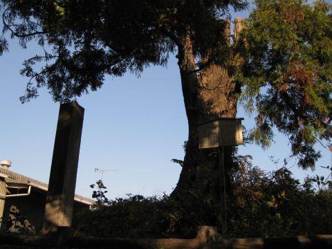 高谷林の一里塚
