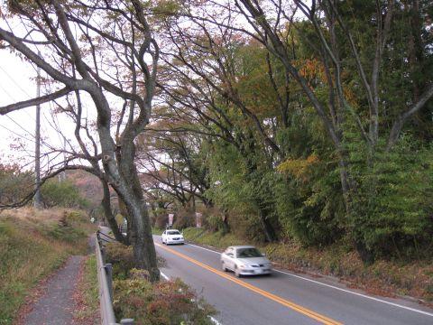 国道119号・石那田