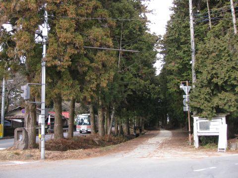 今市の杉並木