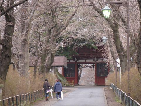 本土寺参道と仁王門