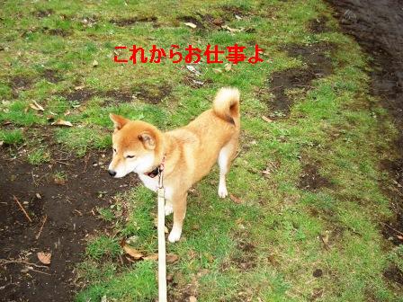 2010_0328(011).jpg