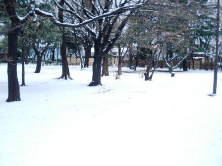 2011_0215(001).jpg