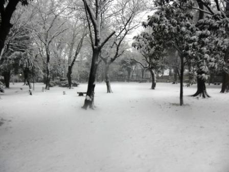 2012_0229(014).jpg