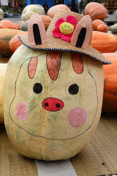 どてかぼちゃカーニバル 130908 01