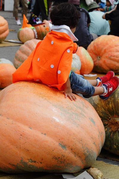 どてかぼちゃカーニバル 130908 10