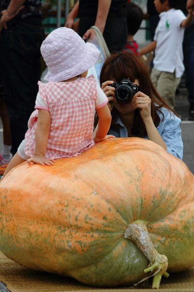 どてかぼちゃカーニバル 130908 12