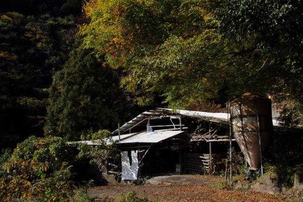 松瀬川・水越地区篠森神社 131116 04