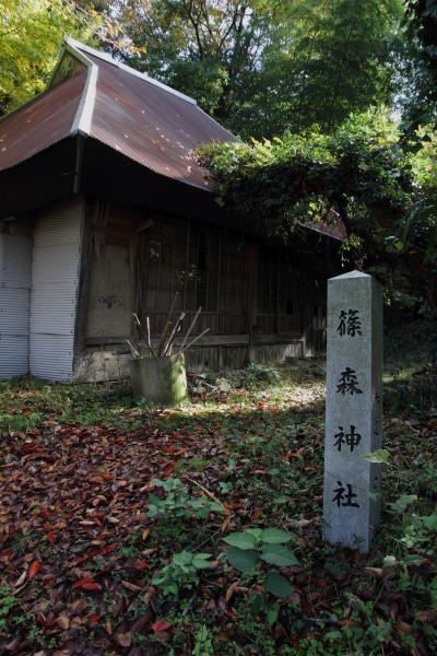 松瀬川・水越地区篠森神社 131116 05