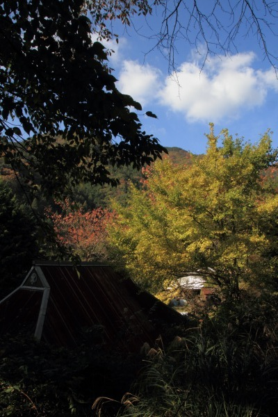 松瀬川・水越地区篠森神社 131116 09