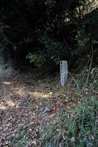 松瀬川・水越地区篠森神社 131116 11