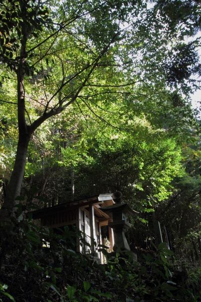 松瀬川・水越地区篠森神社 131116 12