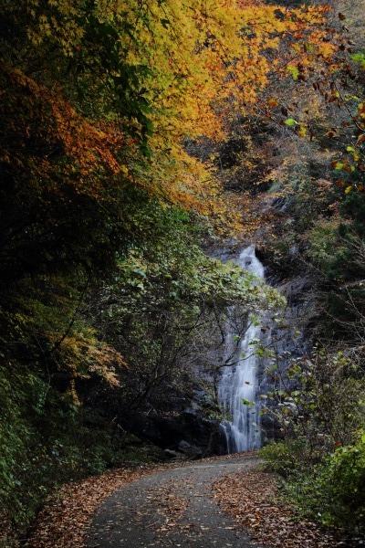井内御来光の滝近無名の滝 131116 02