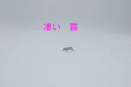 yuki_20100219103037.jpg