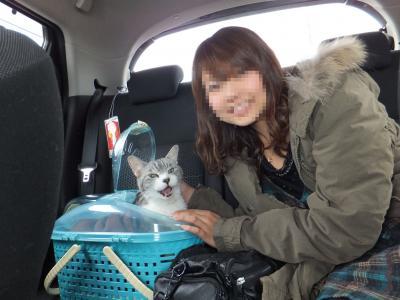レオ2012年1月2日ブログ車
