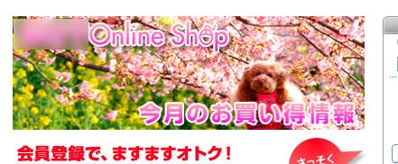 toro_HP.jpg