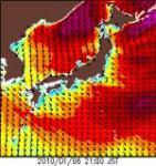 10年1月6日沿岸波浪