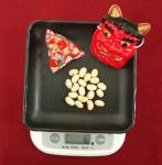 福豆2010 20粒の福豆