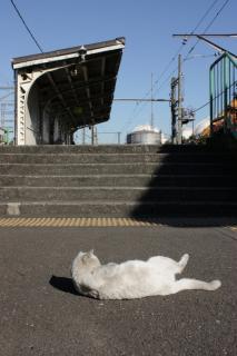 101218_JRE-Tsurumi_07.jpg