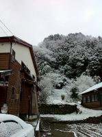 元旦朝は雪化粧