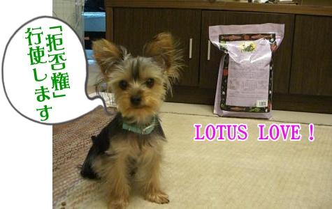 lotus7