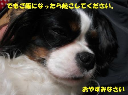 010_convert_20130322180545.jpg