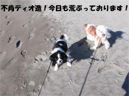 01_convert_20130225173018.jpg