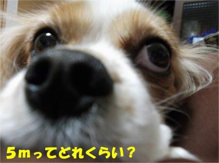 02_convert_20130222171055.jpg