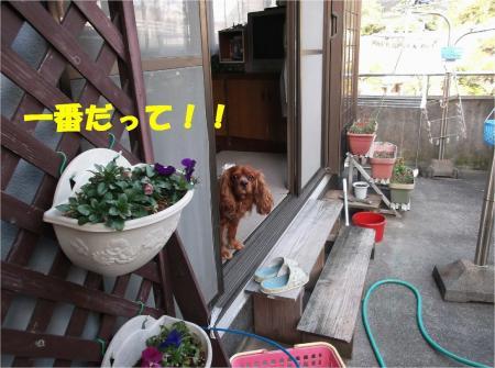 02_convert_20130307173455.jpg