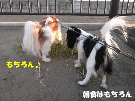 03_convert_20130204172345.jpg